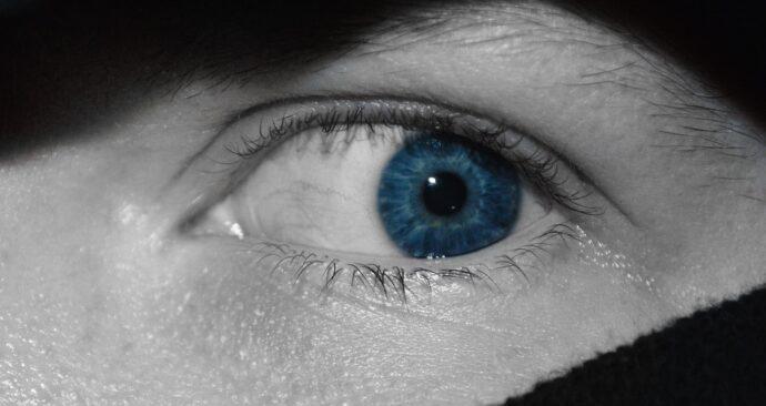 closeup-3497989_1280