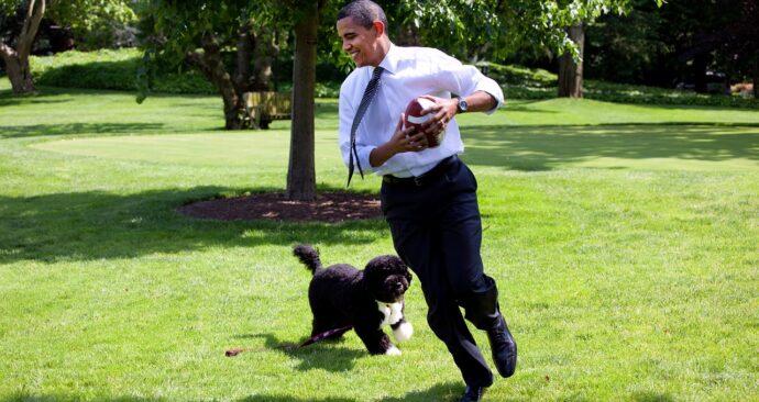 barack-obama-and-bo-1174375_1280