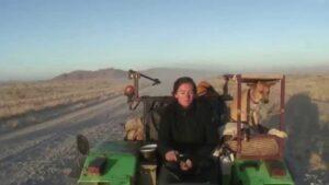 het-meisje-en-de-tractor-%E2%80%93-een-waargebeurd-verhaal-dat-wereldnieuws-werd