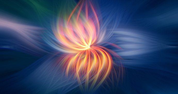 flower-2536651_1920