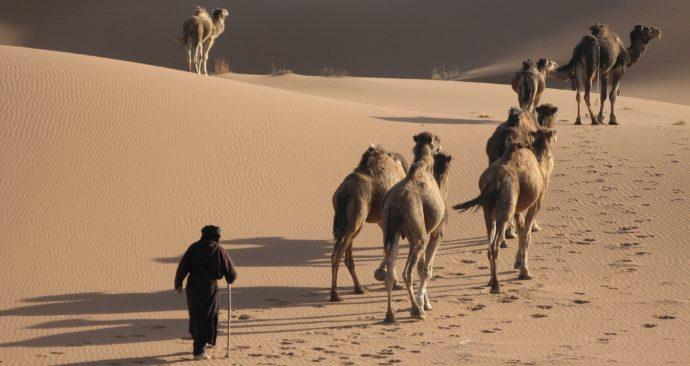 desert-3105128_1920