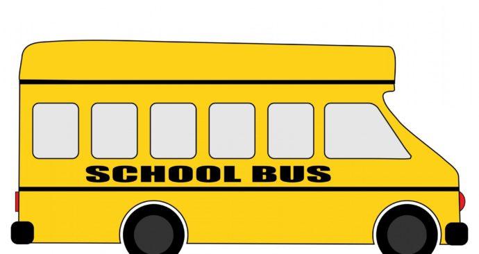 school-bus-163599