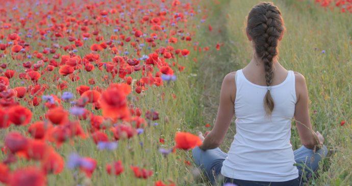 poppies-3644060_1920
