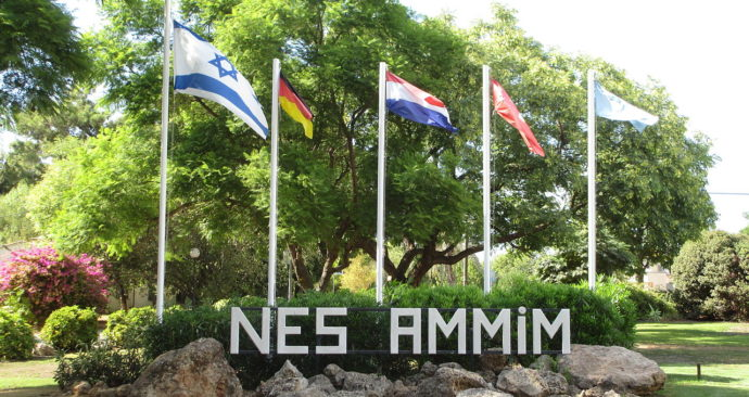 NEs-Ammim-Wikipedia