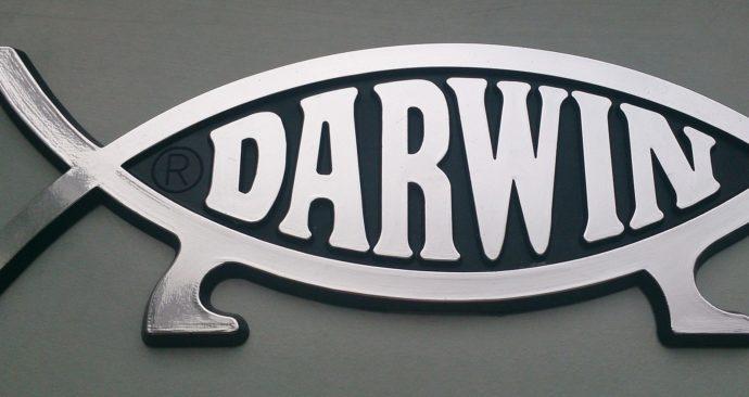 darwin-778446_1920