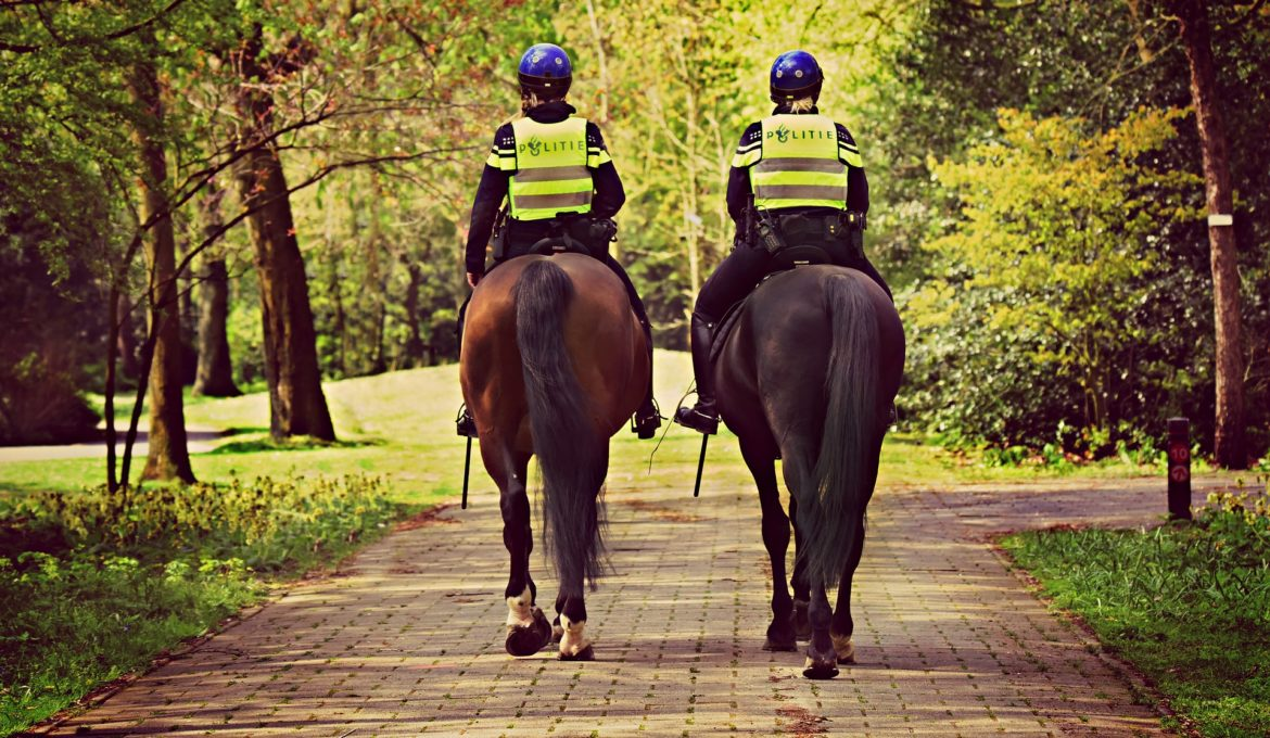 mounted-police-4133226_1920