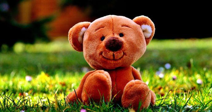 teddy-2439215_1920