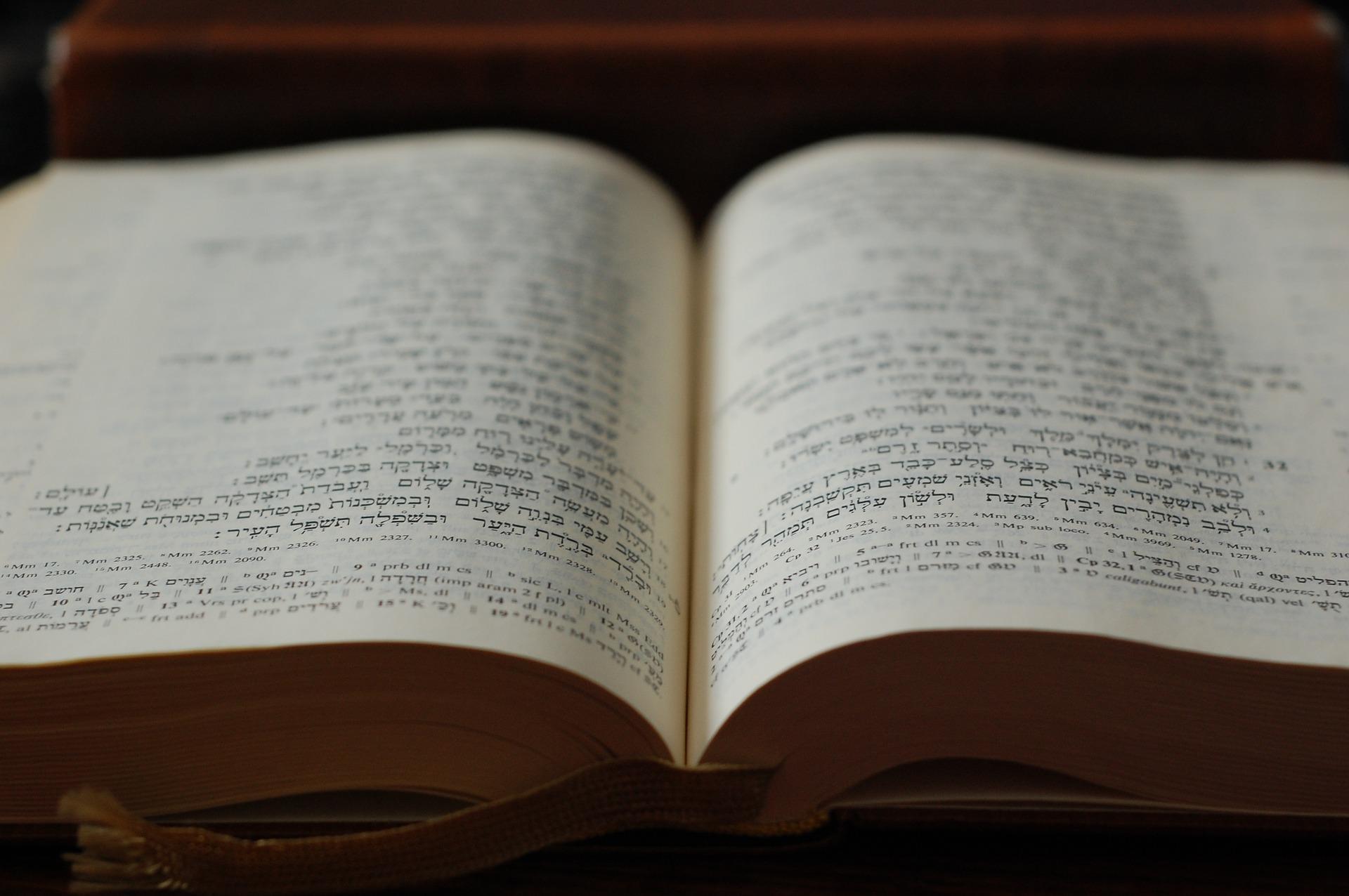 bible-2169371_19202