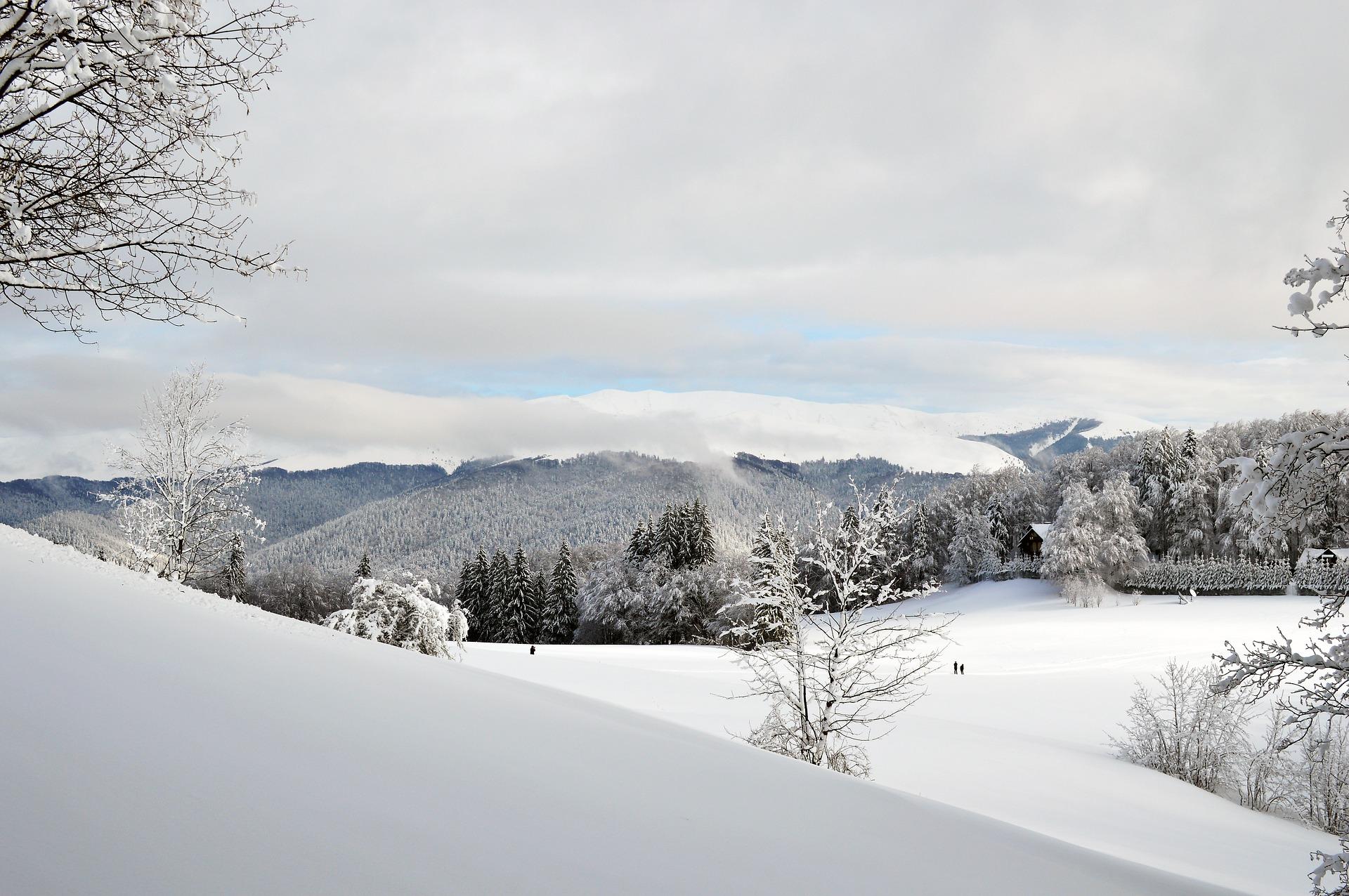 winter-1055469_1920
