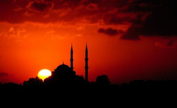 moskeetj