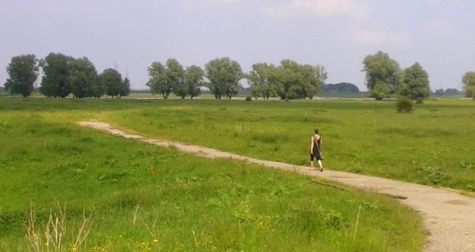 Walk-of-wisdom-2