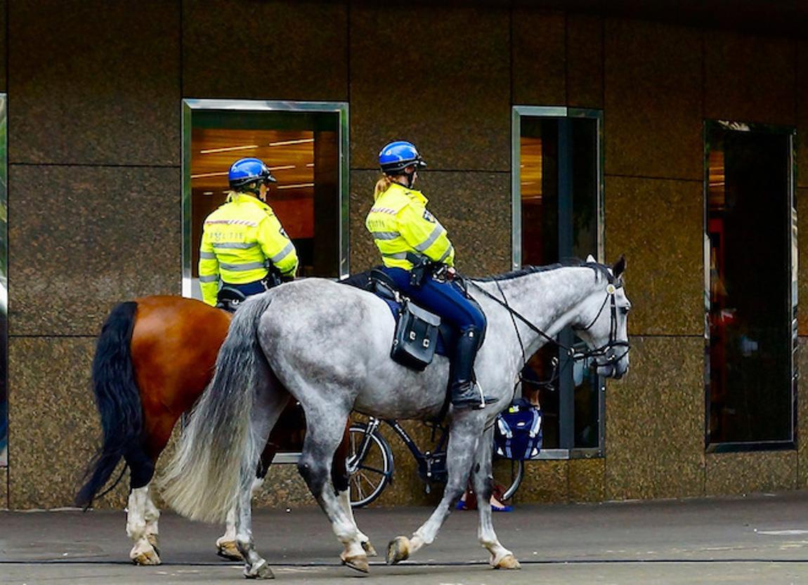 Politie-Roel-Wijnants