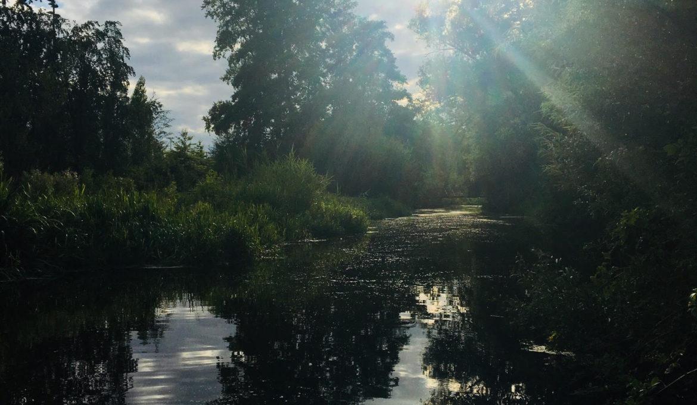 licht-en-water
