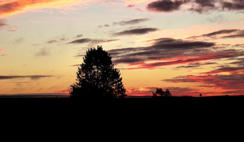dawn-1749990_1920