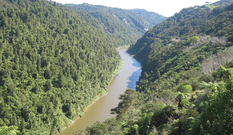 Whanganui-River-nieuw-zeeland