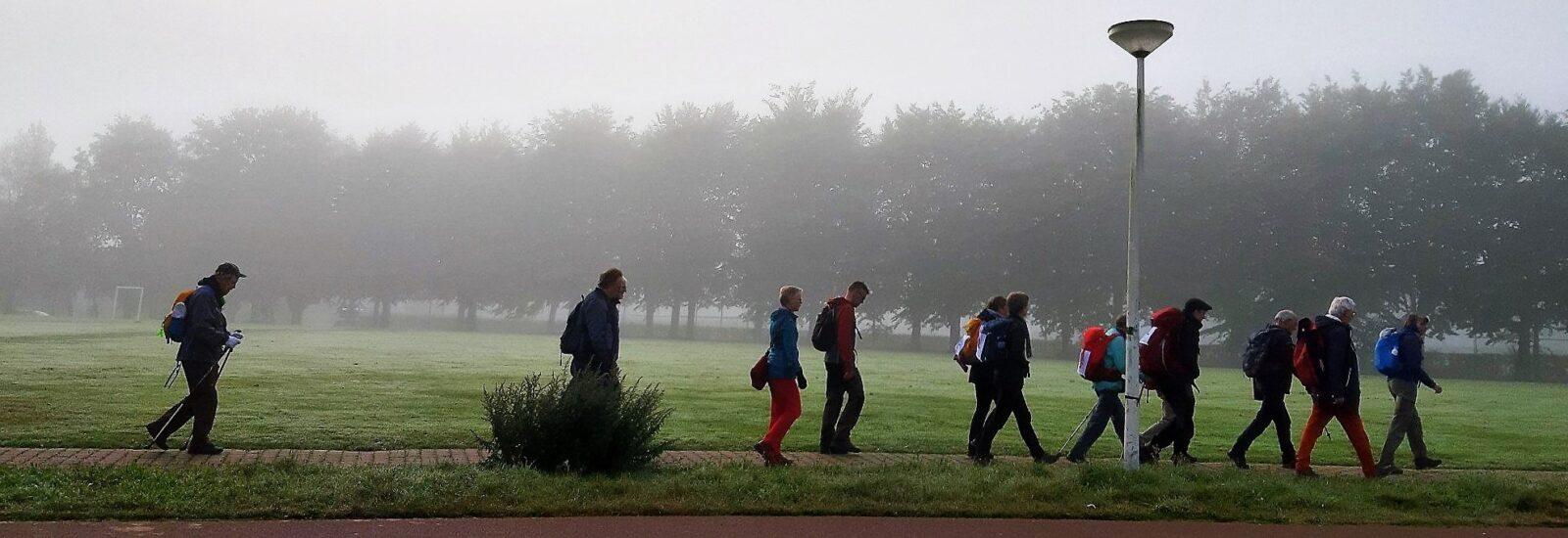1-Serene-start-van-de-dag-in-de-mist-1